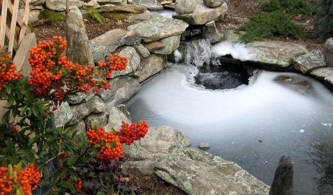 Ako zazimovať záhradné jazierko po sezóne?